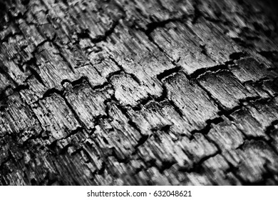 crack of black wood charcoal texture - closeup