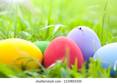 Crack egg and colorful easter eggs on natural green grass background