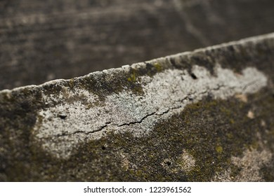 Cracked concrete, building slowly dilapidated, stadium gaits, close-up of erosion, construction, weather effects, weather