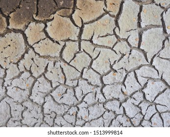Cracked crust of dried silt. Shoal of fresh water due to global warming. Background image, low contrast