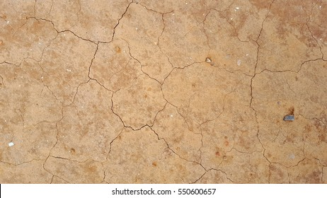 Cracked and dry earth floor