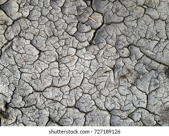 cracked dry earth texture gray background dirt