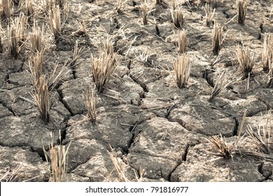 The cracked dry ground because of drought, Concept drought and crisis environment.