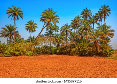 Cracked dry soil in Africa - global warming and greenhouse effect. Cracks in red soil at dry season.