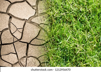 Cracked ground and green meadow - climate change concept image