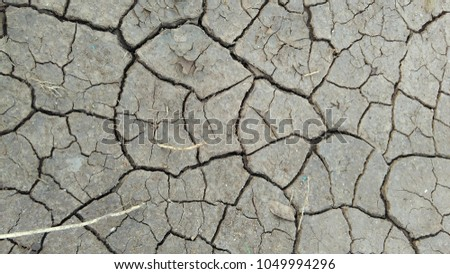 cracked ground in summer for background, wallpaper, banner or image editing with cracked effect