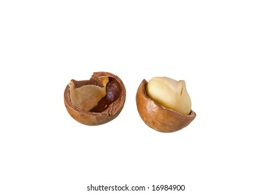 Cracked macadamia with nut in one side against white