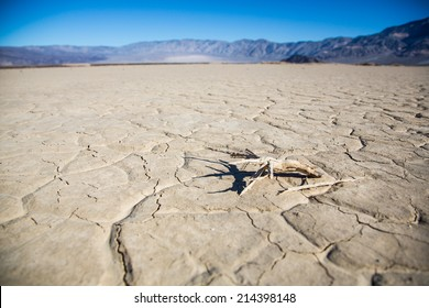 The cracked mud on the floor of a valley in Death Valley National Park. California, USA