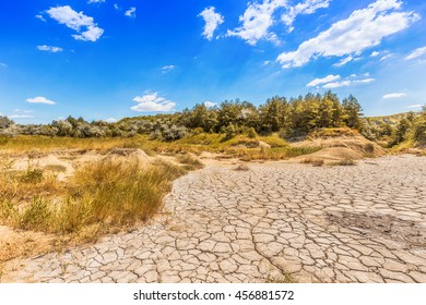 Cracked mud tiles in dry lake bed