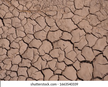 Cracked soil surface for background.