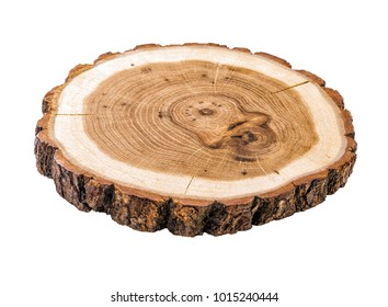 cracked tree trunk cross section with annual rings close-up isolated on white background