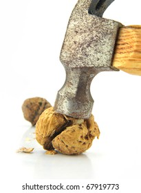 Cracked walnut by hammer. Isolated over white