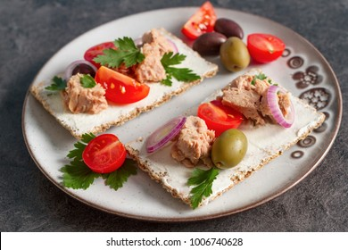 Cracker with tuna spread topping and vegetables