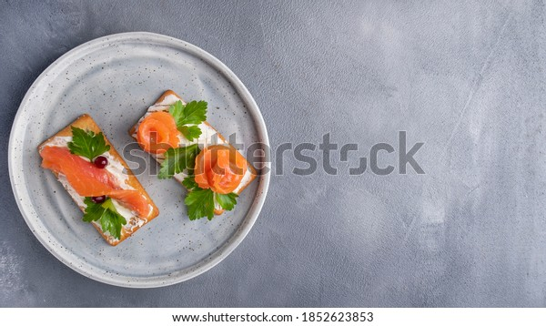 Crackers with salmon on a plate. Top view, copy space