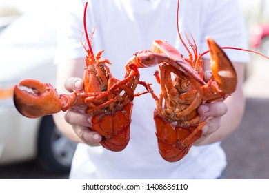 Cracking a boiled red lobster on a concrete table