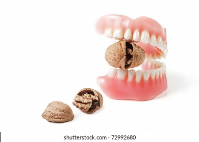 Cracking nuts by new strong teeth in denture on white background