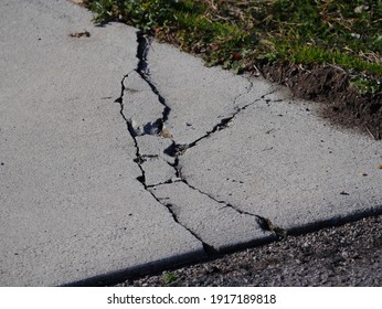 Cracks in concrete driveway, sunken areas caused by heavy equipment or settling