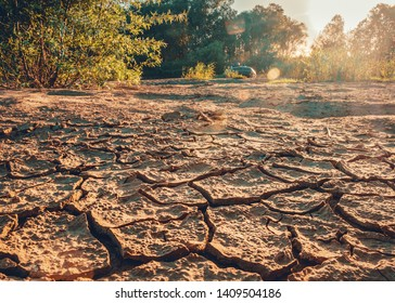 Cracks on the dry shore of the island.