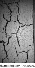 cracks in the paint on a old door