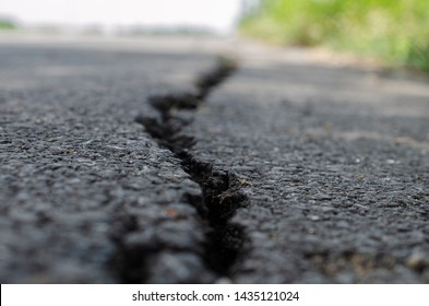 Cracks of the road asphalt