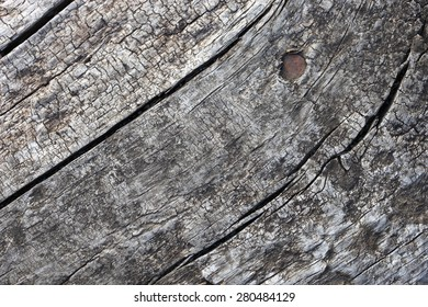 Cracks were found in the light of day on macro photography wood