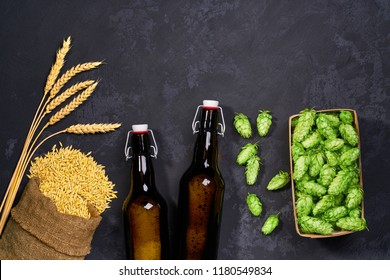 craft beer with fresh green of hops with malt on a black background. Craft beer ingredients  at a brewery