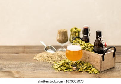 Craft pale ale in a glass with beer growlers and green dry hops. Home brewing. Copy space.