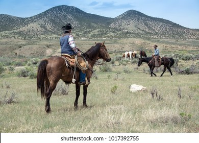 Craig, CO May 6th, 2017: Cowboy wranglers ranch hands on horses gathering up horses on prairie