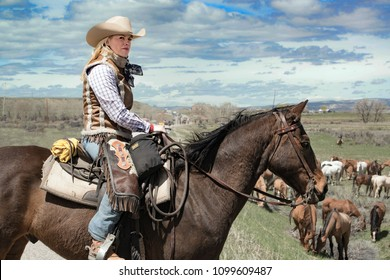 Craig, CO September 26, 2017: Woman wrangler cowgirl with white cowboy hat on bay horse watching over horse herd as they rest during annual horse drive