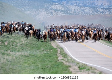 Craig, CO, USA - May 6, 2018: Sombrero Ranch wranglers cowboys cowgirls lead hundreds of horses down the road during annual Great American Horse Drive getting ready for summer trail rides.