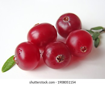 Cranberries close up on a white background