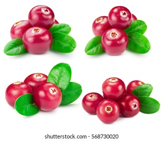 cranberries collection isolated on white Clipping Path