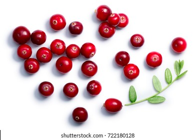 Cranberries (fruits of Vaccinium oxycoccus) with leaves, top view. Clipping paths, shadow separated. Layers: goo.gl/xvn1is