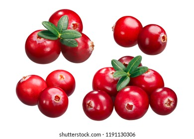 Cranberries (fruits of Vaccinium oxycoccus), piles of two, three and six