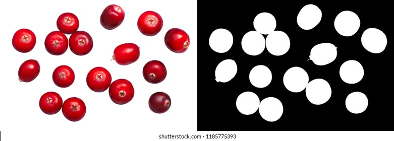 Cranberries (fruits of Vaccinium oxycoccus), top view.
