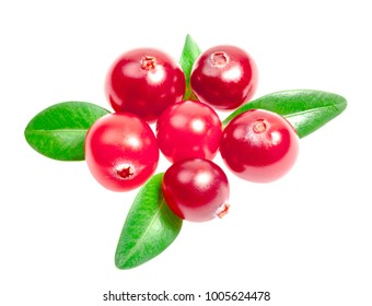 Cranberries with leaves, isolated on white background. Clipping path included.