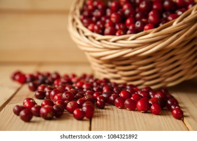 Cranberries scattering on wooden table and a straw basket in the background