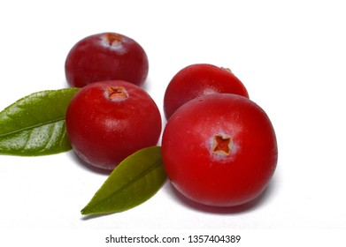 Cranberry berry on a white background. Wild, forest, healthy and sour.