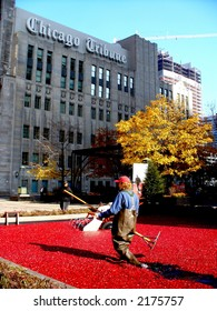 Cranberry Bog in Chicago outside Chicago Tribune Tower November 8, 2006