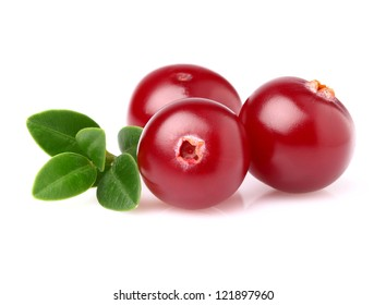 Cranberry in closeup