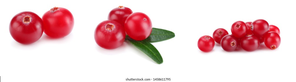 Cranberry collection. Cranberries with leaves isolated on white background.