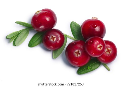 Cranberry (fruits of Vaccinium oxycoccus) with leaves, top view. Clipping paths, shadow separated