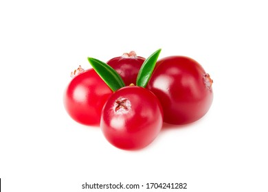 Cranberry with green leaves isolated on white background