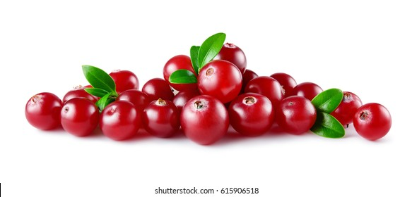 Cranberry. Heap of berries with leaves isolated on white background. Full depth of field.