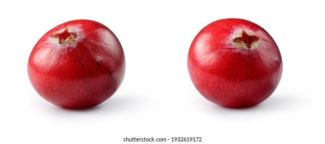 Cranberry isolated. Cranberries on white background. Cranberry set with clipping path.  Full depth of field.