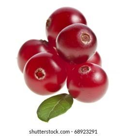 cranberry isolated on white background