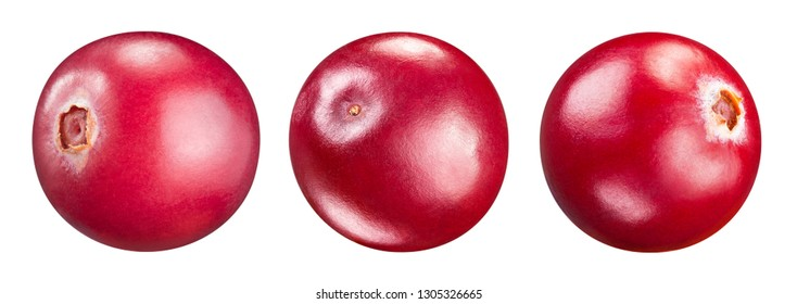 Cranberry isolated on white. Cranberry Clipping Path. Professional studio macro shooting