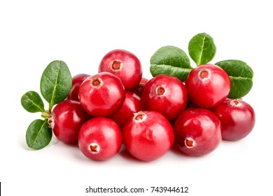 Cranberry with leaf isolated on white background closeup macro