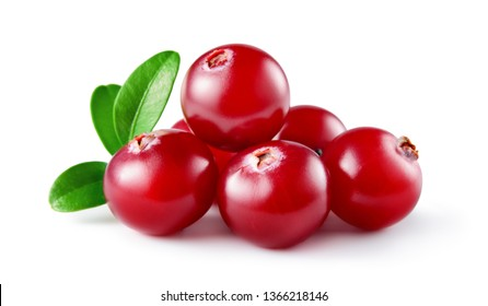 Cranberry with leaves. Cranberries isolated on white. Full depth of field.
