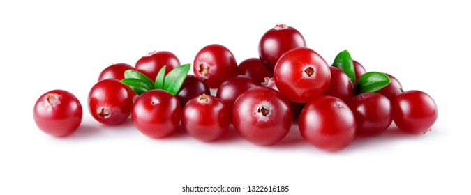 Cranberry with leaves isolated. Cranberries on white. Full depth of field.